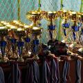 Сильнейшие кудоисты вошли в сборную Приморья (11.11.2017)