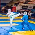 ЧиП ДВФО по Кудо-2017, Фоторепортаж Ивана Панчука